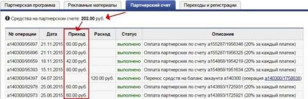 партнерский счет_макхост