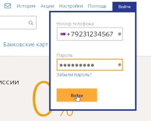 пароль-для-регистрации-кошелька-QIWI