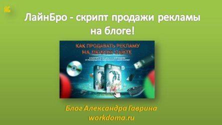 ЛайнБро - скрипт продажи рекламы на блоге!
