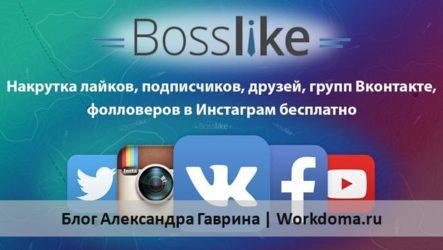 Bosslike (Босслайк) накрутка лайков, подписчиков Вконтакте, Инстаграм бесплатно