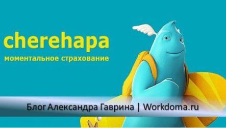 Cherehapa - туристическая страховка онлайн!