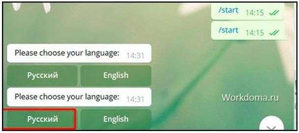telegram proxy выбираем русский язык
