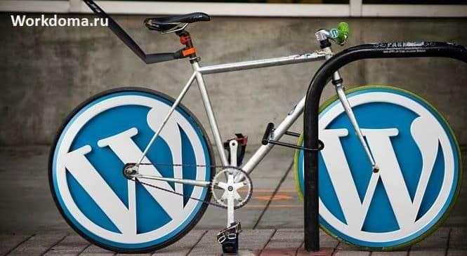 WordPress очень популярен среди профессионалов